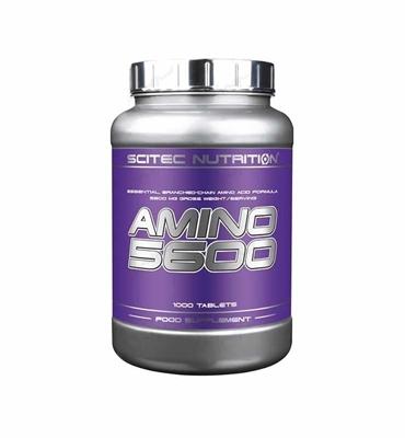 آمینو 5600