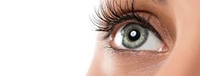 تصویر برای دسته تقویت چشم