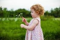 تصویر برای دسته فراورده های گیاهی اطفال